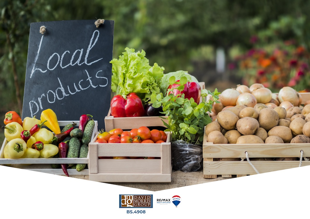 David Morris Group - Local Farmers Markets_ Where to Get Fresh Foods in Reno - Best Reno Real Estate Broker - Best Reno Realtors - Reno Homes - Reno Real Estate
